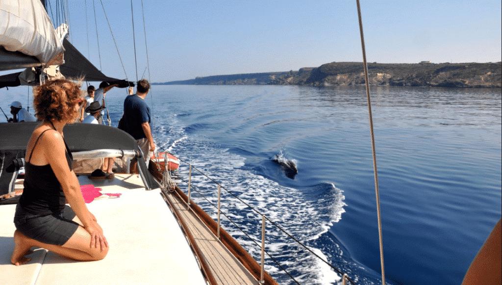 Boat trips south sardinia