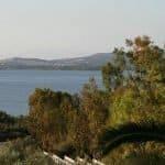 Wonderful view of Punta Trettu from the terrace