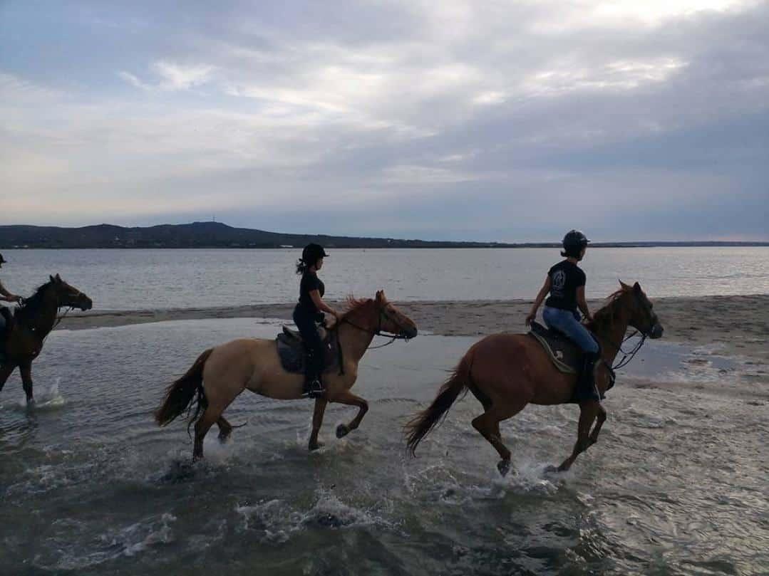 trekking-cavallo-laguna-sud-sardegna