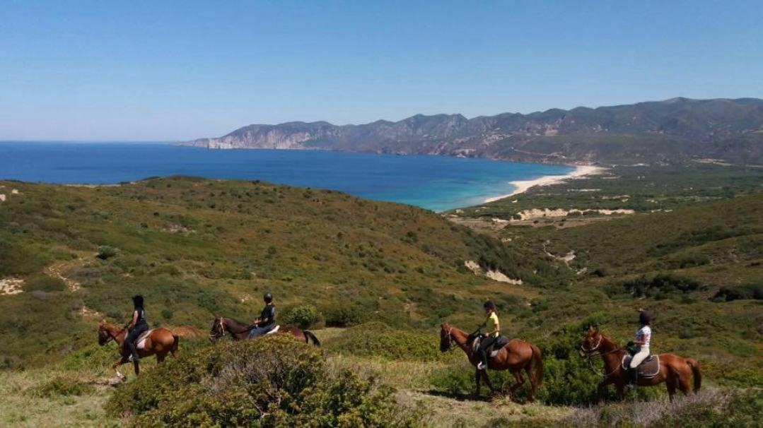 trekking-cavallo-litorale-sud-sardegna